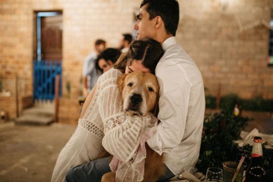 Pets no casamento: tendência aposta em nova face do planejamento familiar