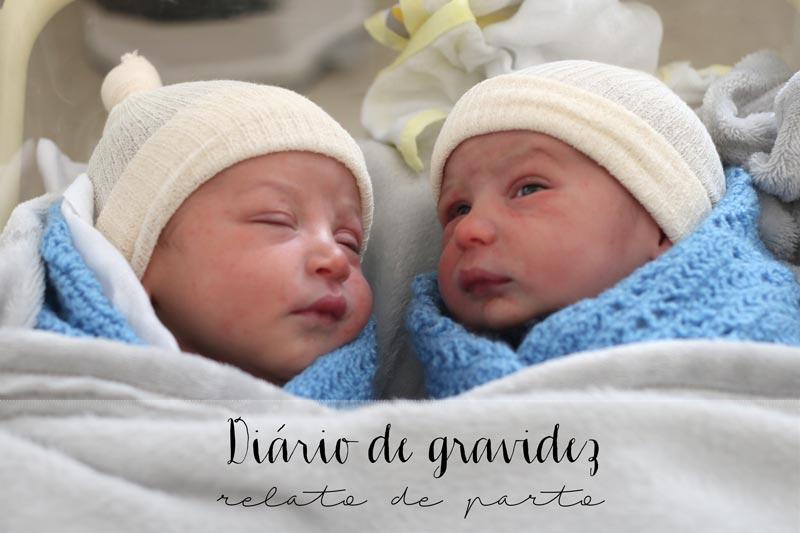 diario de gravidez - relato de parto - gemeos